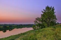 Puesta del sol en el río con una opinión sobre un árbol grande Imagen de archivo libre de regalías