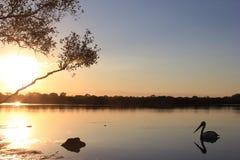 Puesta del sol en el río de Noosa Foto de archivo libre de regalías