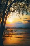 Puesta del sol en el río - un paisaje de igualación hermoso del verano Rusia imágenes de archivo libres de regalías