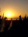 Puesta del sol en el raglán, Nueva Zelandia Fotos de archivo