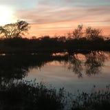 Puesta del sol en el rancho fotos de archivo