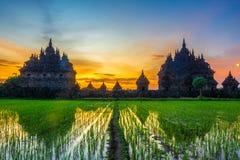 Puesta del sol en el templo plaosan, Indonesia fotografía de archivo