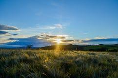 puesta del sol en el top imagen de archivo libre de regalías