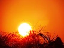 Puesta del sol en el top de la montaña Imagen de archivo