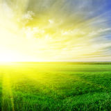 Puesta del sol en el verano Foto de archivo