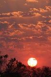Puesta del sol en África Imagen de archivo libre de regalías