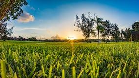 Puesta del sol en fuerte Myers Foto de archivo libre de regalías