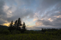 Puesta del sol en Grayson Highlands State Park, Virginia Foto de archivo libre de regalías