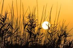 Puesta del sol en Grecia Imagen de archivo