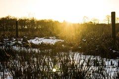 Puesta del sol en invierno Fotos de archivo