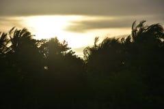 Puesta del sol en jaffna Imagen de archivo libre de regalías
