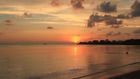 Puesta del sol en Jamaica almacen de metraje de vídeo