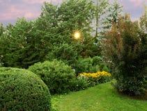 Puesta del sol en jardín encantador Foto de archivo