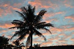 Puesta del sol en Kerala imagen de archivo libre de regalías