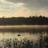 Puesta del sol en la charca de la rana Fotografía de archivo libre de regalías