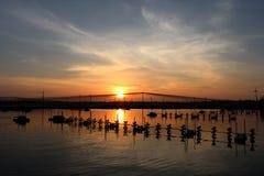 Puesta del sol en la charca del camarón foto de archivo libre de regalías