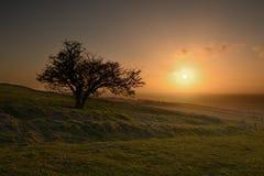 Puesta del sol en la colina Fotografía de archivo