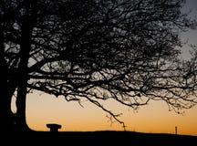 Puesta del sol en la colina de Coombe en las colinas de Chiltern Imágenes de archivo libres de regalías