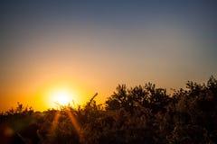 Puesta del sol en la costa Foto de archivo libre de regalías