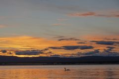Puesta del sol en la costa de Puerto Natales imagenes de archivo