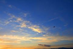 Puesta del sol en la costa del mar Imagen de archivo