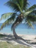 Puesta del sol en la Florida Fotos de archivo libres de regalías