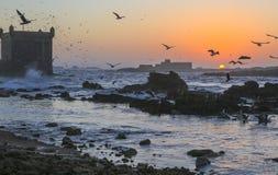 Puesta del sol en la fortaleza de Essaouira, Marruecos Foto de archivo libre de regalías
