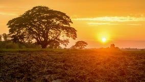 Puesta del sol en la granja, campo de Myanmar fotos de archivo libres de regalías