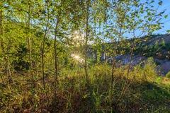 Puesta del sol en la mina o lago o charca con la playa arenosa, agua verde, Imágenes de archivo libres de regalías