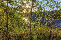 Puesta del sol en la mina o lago o charca con la playa arenosa, agua verde, Foto de archivo