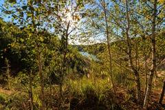 Puesta del sol en la mina o lago o charca con la playa arenosa, agua verde, Imagen de archivo libre de regalías