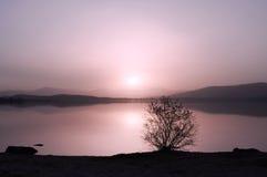 Puesta del sol en la orilla del lago Fotos de archivo libres de regalías