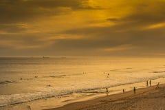 Puesta del sol en la playa de las personas que practica surf Fotografía de archivo libre de regalías