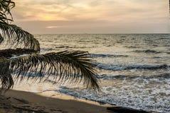 Puesta del sol en la playa del Caribe Foto de archivo libre de regalías