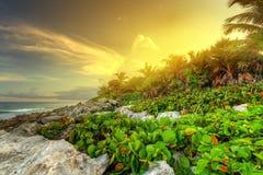Puesta del sol en la playa del Caribe rocosa Foto de archivo libre de regalías