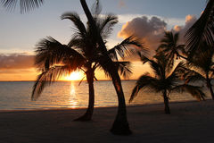 Puesta del sol en la playa en las Bahamas Imagen de archivo
