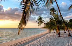 Puesta del sol en la playa en las Bahamas Fotos de archivo
