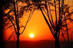 Puesta del sol en la región de la pampa, el Brasil Fotografía de archivo libre de regalías