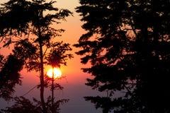 Puesta del sol en la reserva del bosque de la nube de Monteverde Foto de archivo