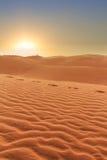 Puesta del sol en landscpe del desierto Fotografía de archivo