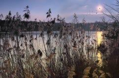 Puesta del sol en las cañas Imagen de archivo libre de regalías