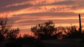 Puesta del sol en las montañas de la superstición, Arizona metrajes