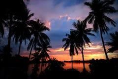 Puesta del sol en las zonas tropicales Imágenes de archivo libres de regalías