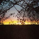 Puesta del sol en Lincolnshire Foto de archivo libre de regalías