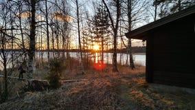 Puesta del sol en los árboles con la llamarada de la lente Imagen de archivo