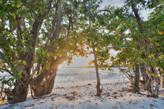 Puesta del sol en los marismas Imagen de archivo libre de regalías