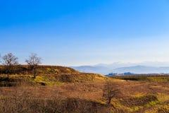 Puesta del sol en los viñedos de Collio, Italia Imagen de archivo libre de regalías