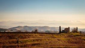 Puesta del sol en los viñedos de Collio, Italia Imagen de archivo