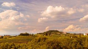 Puesta del sol en los viñedos de Rosazzo Fotos de archivo libres de regalías