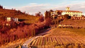 Puesta del sol en los viñedos de Rosazzo Fotos de archivo